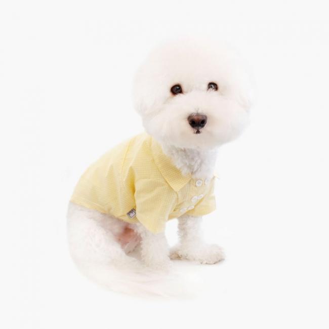 더레스트오브라이프 스프링 셔츠 (옐로우)